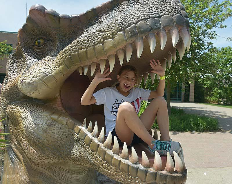 Dinosaurs encounter